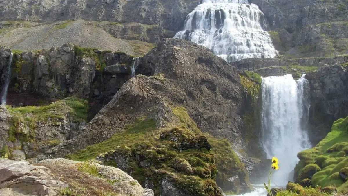 The Giant of an Icelandic Waterfall You Must See Before You Kick the Bucket