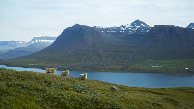 The Icelandic countryside and the weather is perfect.