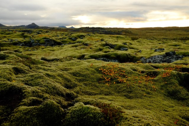 The serenity of the Reykjanes peninsula in South West Iceland is a far cry from Kuala Lumpur.
