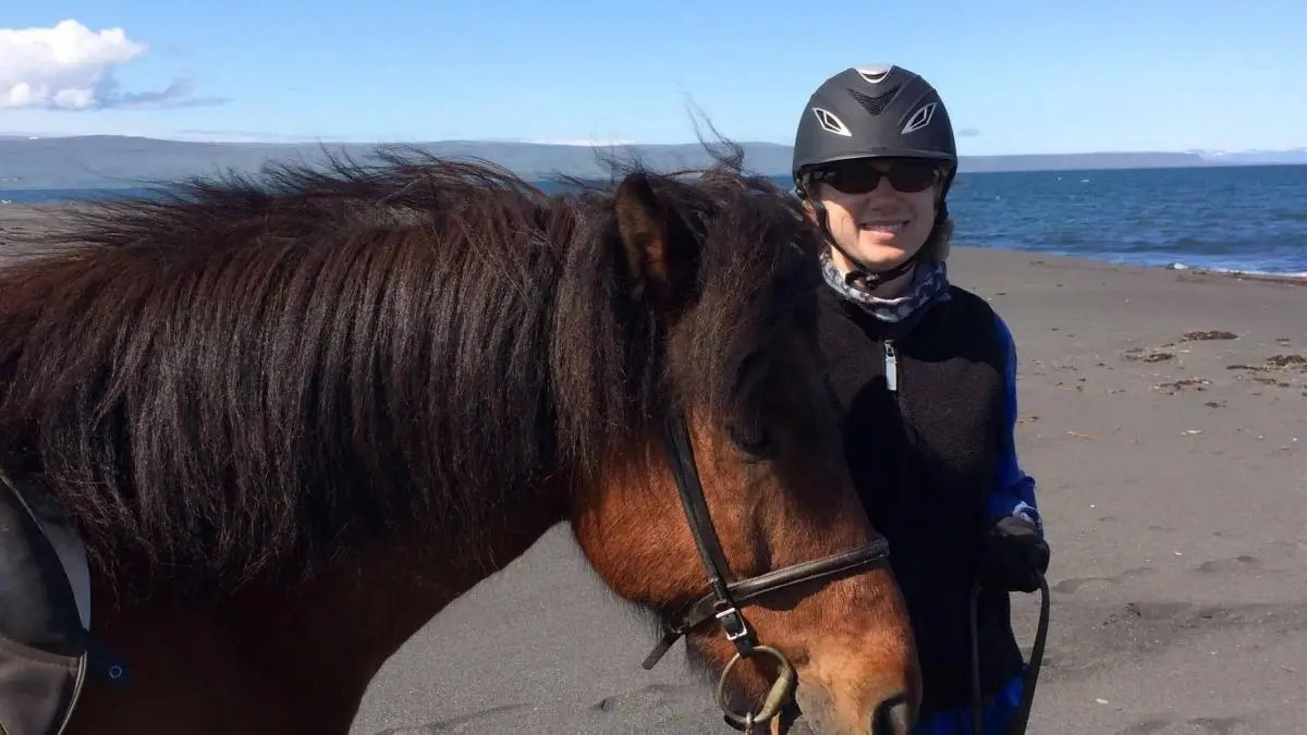 Wild Horses of the Summer Sun – Discovering the Icelandic Horse