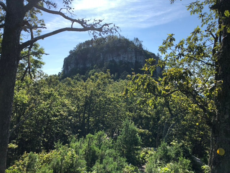 Pilot knob made of stone rising from the mountain covered by trees. One of the best places to hike near Winston-Salem.