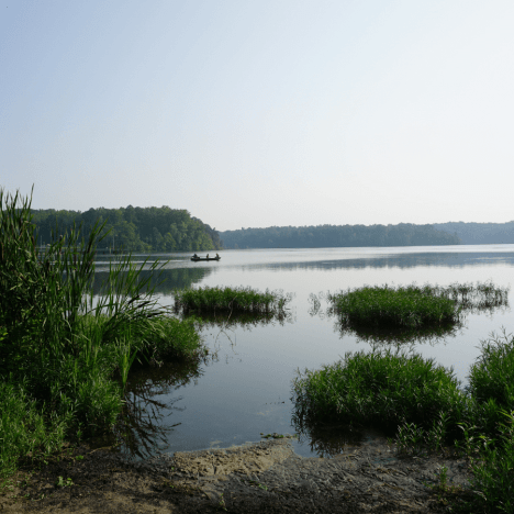 Hiking Near Wilmington, NC: From Easy to Difficult