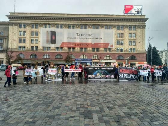 В Харькове митинговали за права животных 16
