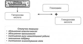 Polymyositis és dermatomyositis