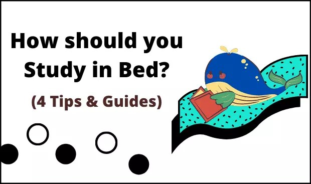 how should I study in bed