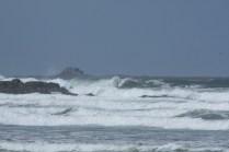The wild North Sea