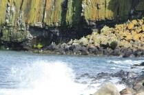 waves crash against the shore