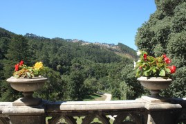 Admiring the Sintra National Park from the balcony
