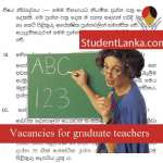 graduate-teacher-selection-examination