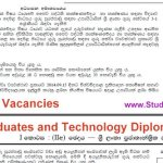 Technology Stream Teacher vacancies for Graduates and Diploma Holders