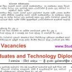 Technology Stream Teacher vacancies for Graduates and Diploma Holders