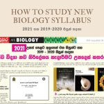 2021-biology new syllabus-advice