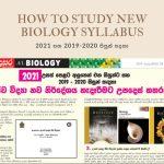 2021-biology new syllabus-advice