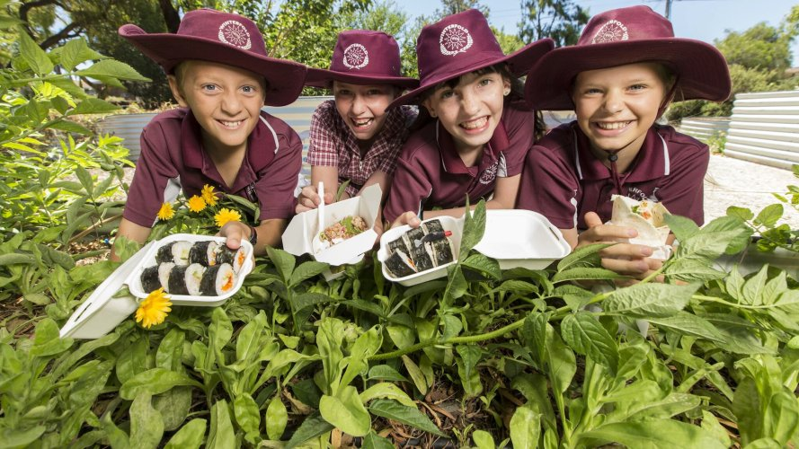 Students Focusing On Healthy Food