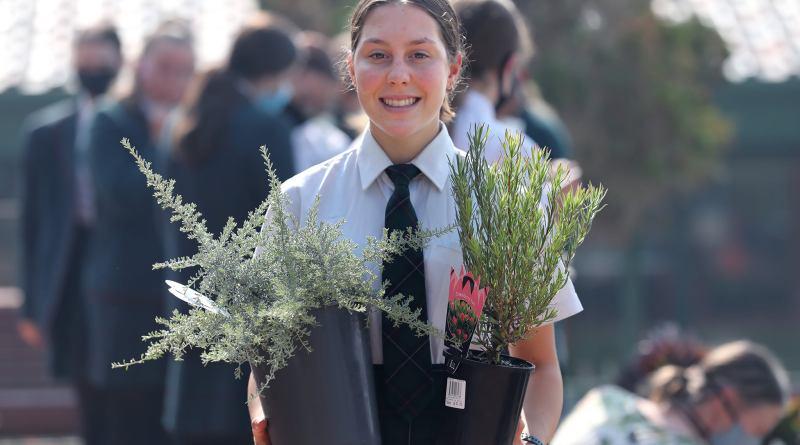Santa Maria College Students Get Planting