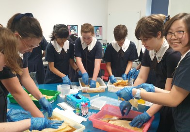 St Aidan's Students Get Scientific and Sustainable