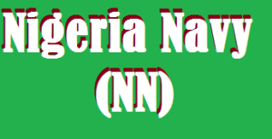 Steps to check your name on the Nigeria Navy test result portal & Download in PDF