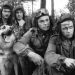 «Четыре танкиста и собака» это добрая сказка, про злую войну