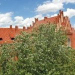 Университет Николая Коперника в Торуне