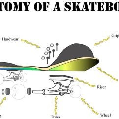 Ray And Skate Diagram Gibson Les Paul Custom Wiring Anatomy Schema Img Of A Skateboard Bay Area S Bordertown Vs