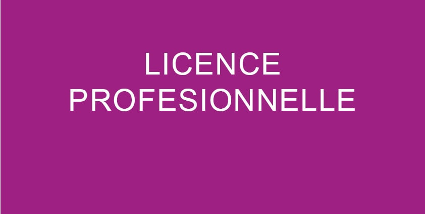 Licence-pro-Students.ma