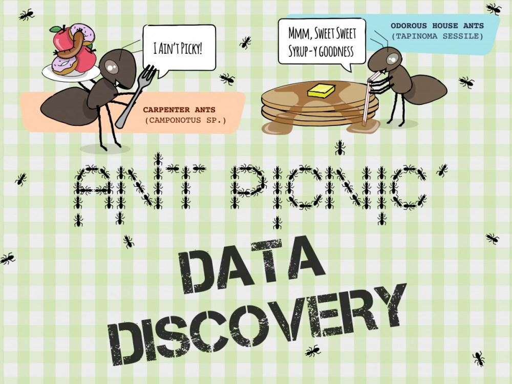 medium resolution of Ant Picnic Data Discovery – Students Discover