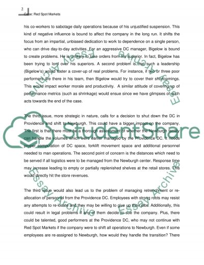 Red Spot Markets Company Essay Example Topics And Well Written