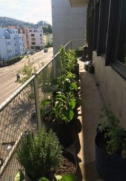 Oerban Balcony