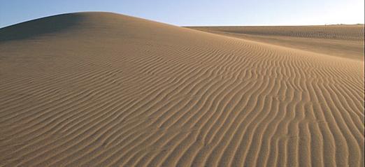 kansai - Tottori-ken, Puoi girovagare per le vaste distese di sabbia e nonostante tutto essere a casa in tempo per la cena