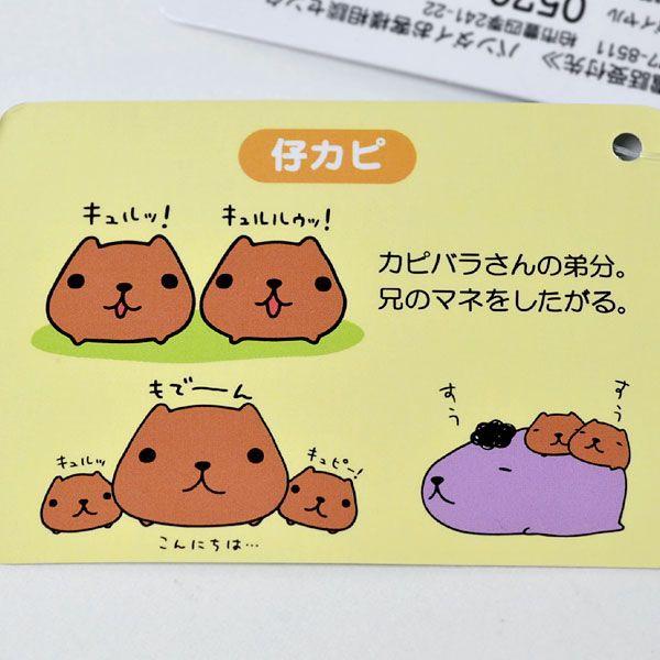 kapibara-san capibara nakama (2)