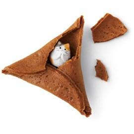 Biscottini portafortuna con gatto nascosto