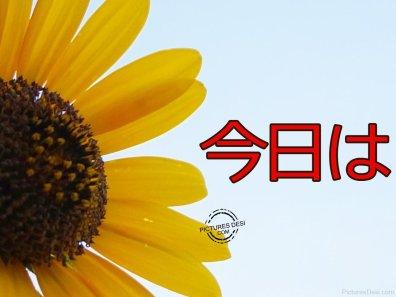 miti-come-si-dice-ciao-in-giapponese-cfr-konnichiwa-errori-inglesi-6