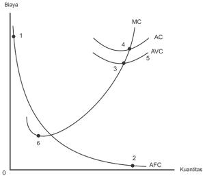 Kurva teori biaya produksi- average cost, average fixed cost, fixed cost, marginal cost