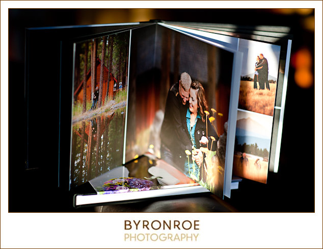 byronroephotography-albumsample5