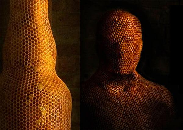 Impression 3D avec …. des abeilles !
