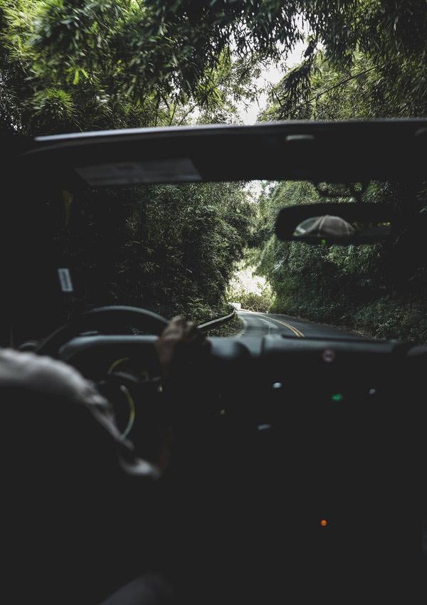 bestuurder in een auto