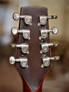 studio-la-boite-a-meuh-guitare-bouzouki-tete-derriere