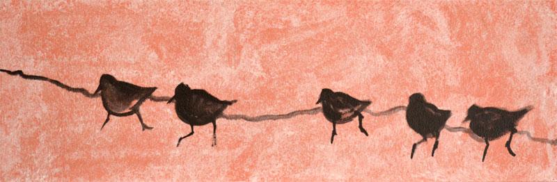 sandpiper birds painting