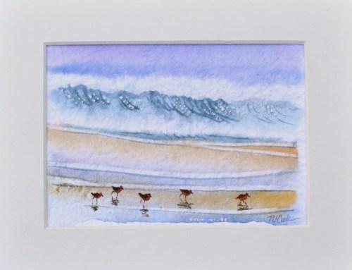 sandpiper birds watercolor by PJ Cook