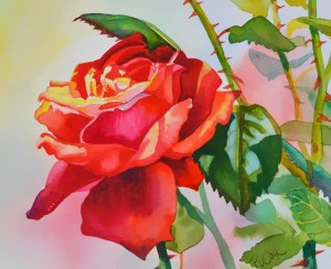red rose flower watercolor painting by artist PJ Cook
