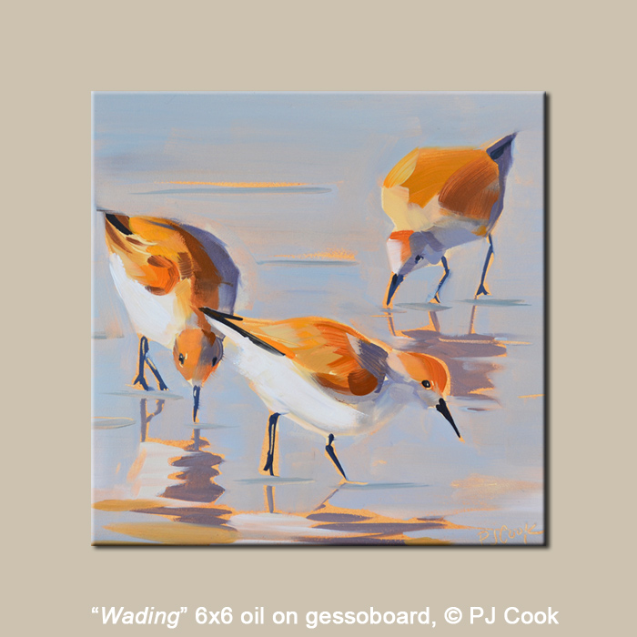 6x6  oil painting of wading birds looking for food in the surf seascape