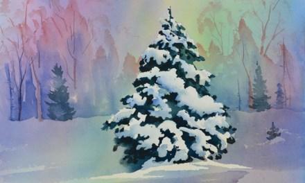 Snow Scene Landscape