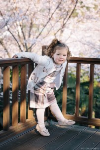 Geoje Okpo South Korea spring cherry blossom family photographer-12