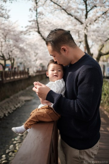 Jinhae Cherry Blossom Festival Yeojwacheon Stream Family Portrait Photographer South Korea-1