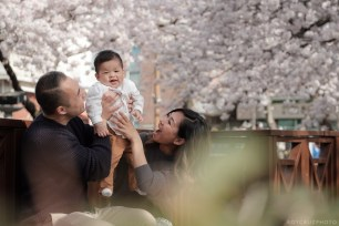 Jinhae Cherry Blossom Festival Yeojwacheon Stream Family Portrait Photographer South Korea-8