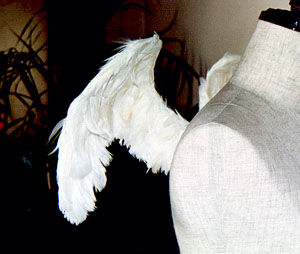 wing004-s