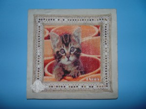 Tabby Cat In Flower Pot Diamond Painting Embroidery Kit