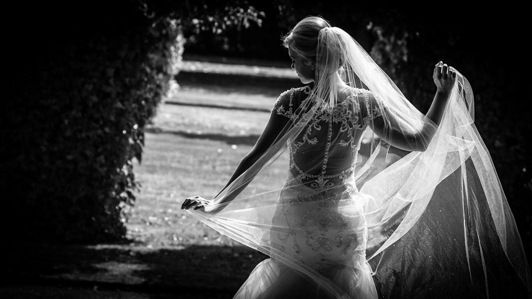 sun shines through brides viel
