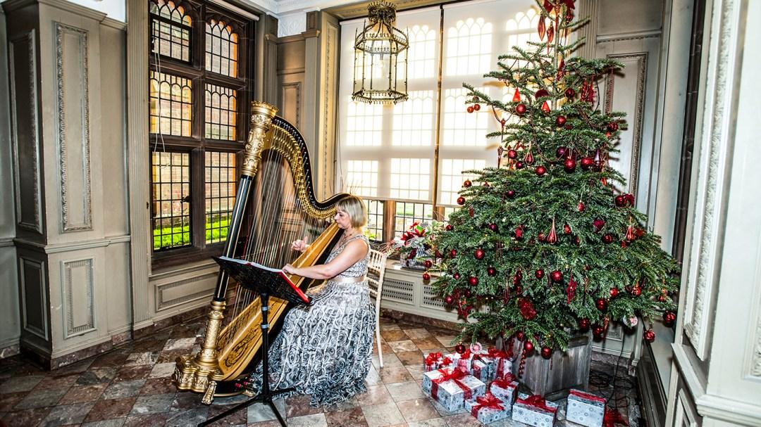 Harpest at Christmas wedding