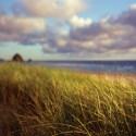 Andrews-Cannon-beach